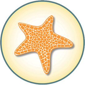 seastar-graphic